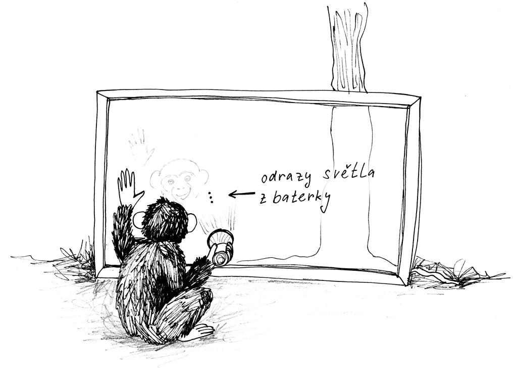49-simpanz-trojsklo-ilustrace_1024.jpg